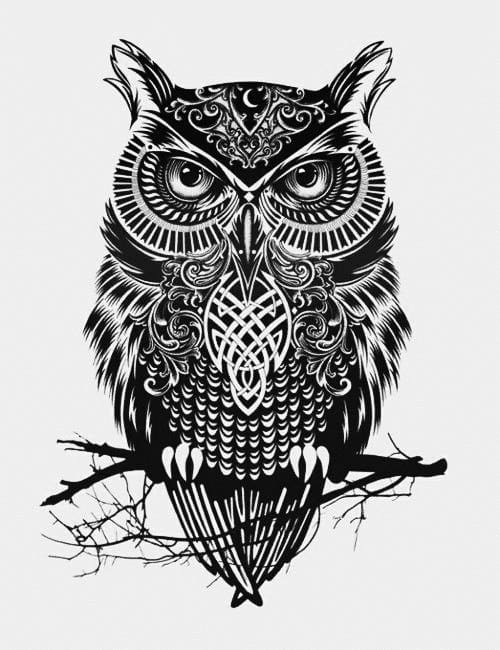 Owl Vector Design  FreePatternsArea